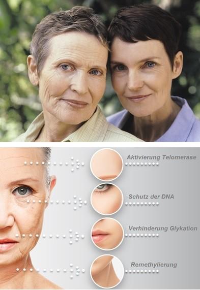 Anti-Aging-Reverse-Aging